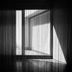 © Miguel Jardim